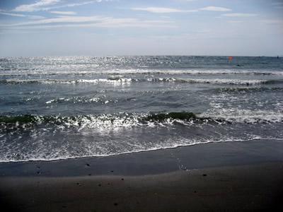 akiya_shore01.jpg