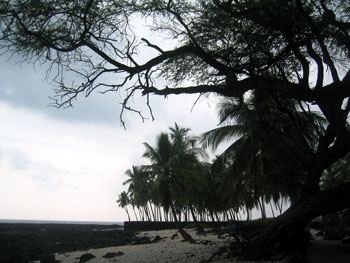 honaunau_beach.jpg