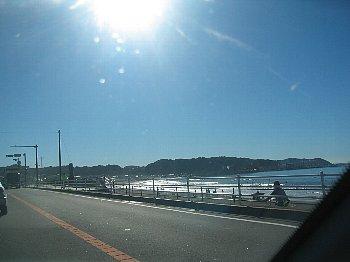 sunnyday01.jpg