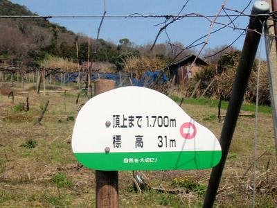 sanuki05.jpg